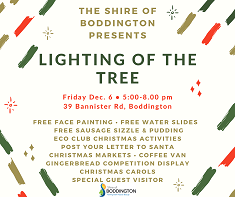 LIGHTING OF THE TREE 2019